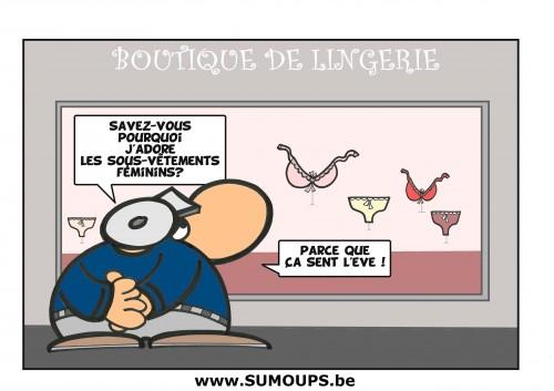 sumoups, humour, bd