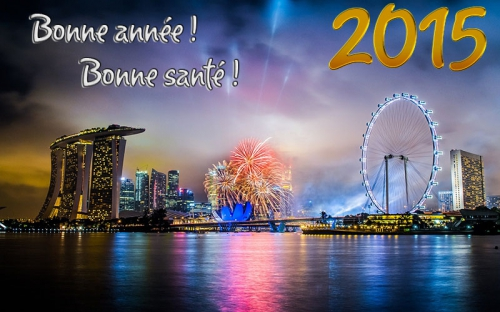 1408393694-bonne-annee-2015-003.jpg