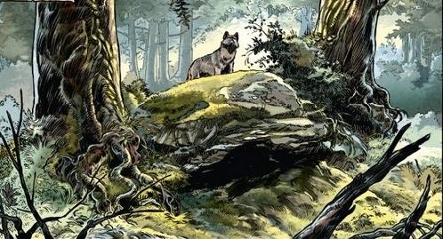 Un loup est un loup1dhf.jpg