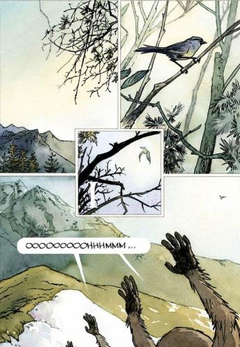 Le crépuscule des idiots, Krassinsky, Casterman, 31 août 2016, roman graphique, fable