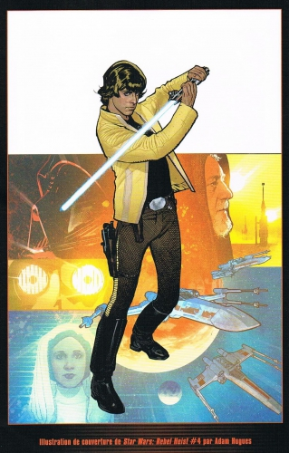 star wars icones,matt kindt,marco castiello,adam hugues,science fiction,la guerre des étoiles,luke skywalker,princesse leia,chewbacca,han solo