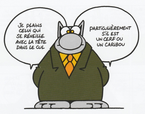Le Chat, Philippe Geluck, Casterman, Humour