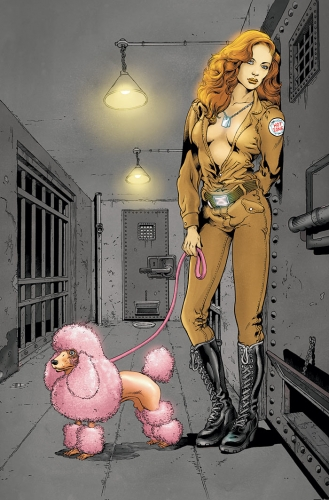 pin up girls,variant covers,