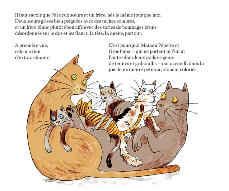 JackyChat le chat_chours_paquet_scan 002