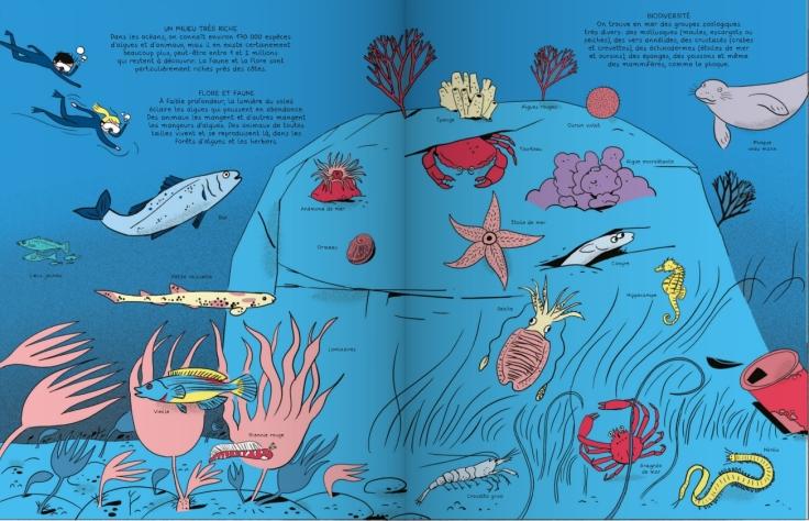 Casterman_les sciences en BD_les oceans_scan