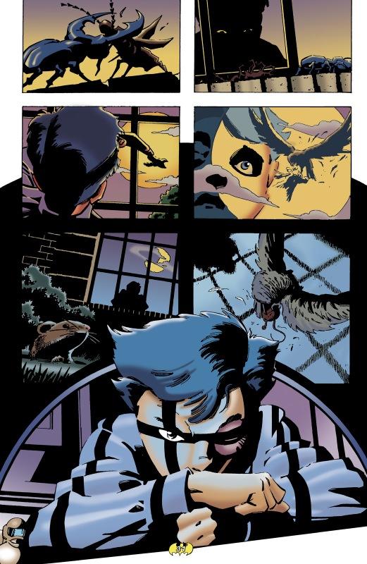 Batman mythology 3 bruce wayne