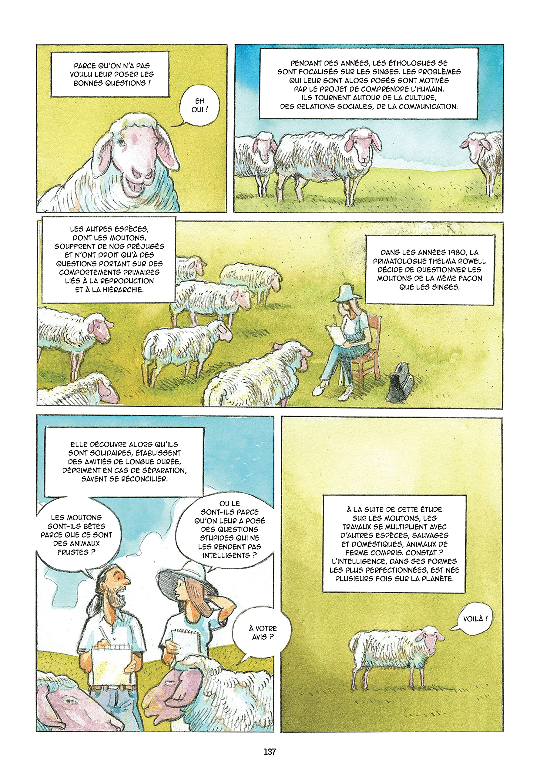 L-incroyable histoire des animaux_le grand recit des relation entre les animaux et les humains_Karine-Lou Matignon_Olivier Martin_Les arenes BD_extrait mouton